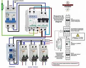 Esquemas El U00e9ctricos  Como Conectar Protector Contra