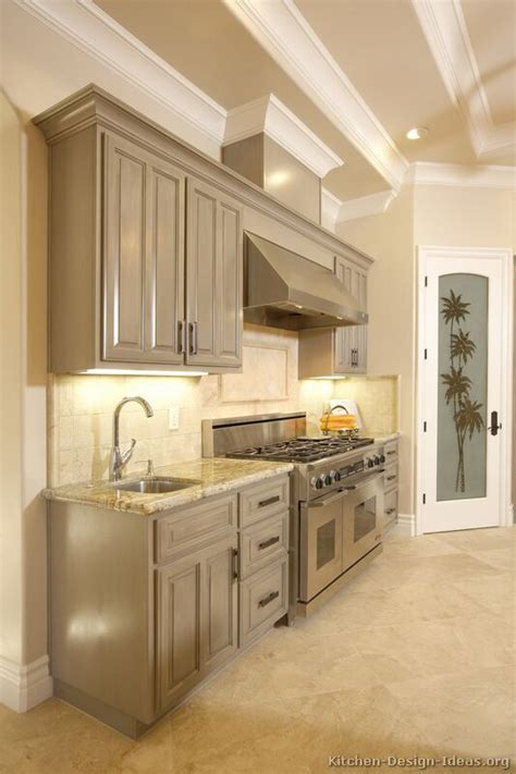 grey kitchen cabinets with pictures of kitchens traditional gray kitchen cabinets
