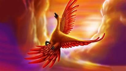 Phoenix Bird Fire Wallpapers Golden Birds Background