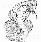 Garter Snake Drawing Clipartmag Coloring Pages sketch template