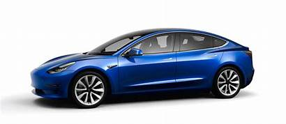 Tesla Hatch Prototype Comparison Opened Ford Spotted