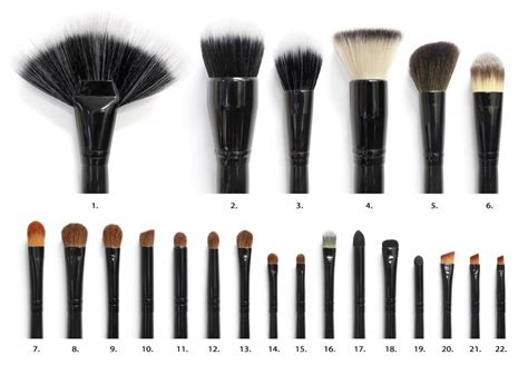 Makeup Brushes 101 You Put It On