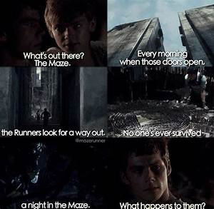 the maze runner ♥ - image #3887781 by rayman on Favim.com