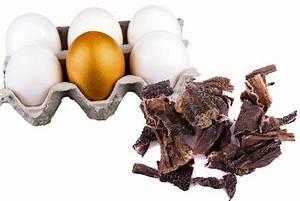 Was Fressen Ratten : was fressen marder eine bersicht ~ One.caynefoto.club Haus und Dekorationen