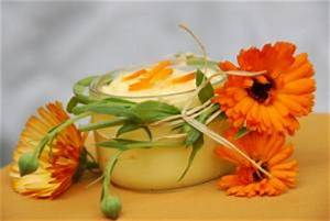 Ringelblumen Creme Selber Machen : ringelblumensalbe heilende naturkosmetik selber machen ~ Frokenaadalensverden.com Haus und Dekorationen