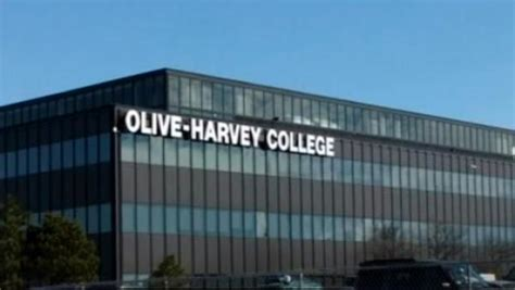 Oliveharvey College Getting Hightech Addition  Video. Good Mutual Funds For Roth Ira. United States Military Academy Preparatory School. High Yield Ira Accounts Chicago Boat Charters. Car Accident Lawyers In Illinois. Satellite Tv And Internet Bundles. I 95 Toyota Brunswick Ga Proliant Blade Server. Medical Assistance Programs Best Seo Agency. Chiropractor Suwanee Ga Plumber Woodbridge Va