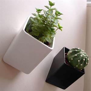 Plante D Intérieur Pas Cher : pot plante mural vente de fleurs en ligne pas cher ~ Dailycaller-alerts.com Idées de Décoration