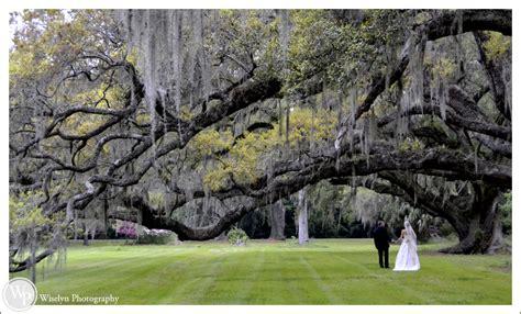 magnolia plantation and gardens st wedding photography april dustin s wedding