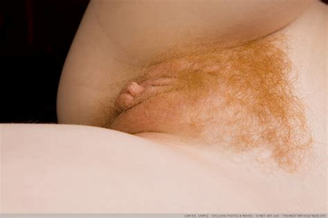 Rochelle In Gallery Gorgeous Hairy Redhead Picture Uploaded By Thedonger On