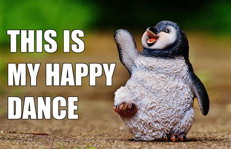 Happy Dance Meme - african happy dance meme pictures to pin on pinterest pinsdaddy