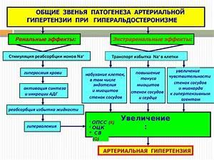 Гипертоническая болезнь ii стадия. лечение