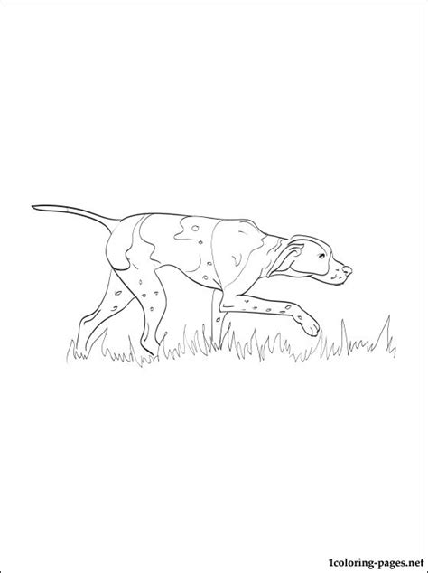 pointer coloring page coloring pages