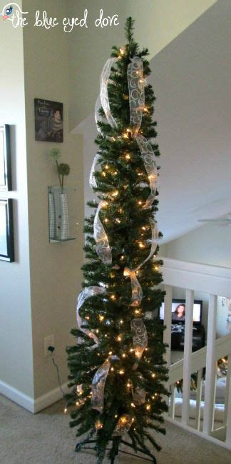 tall skinny trees ideas  pinterest tall