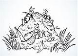 Ants Ameisenhaufen Ant Forest Outline Drawing Anthill Vektorzeichnung Ameisen Clip Taxonomic Rank Concept Leg Illustrationen Vektoren Vector sketch template