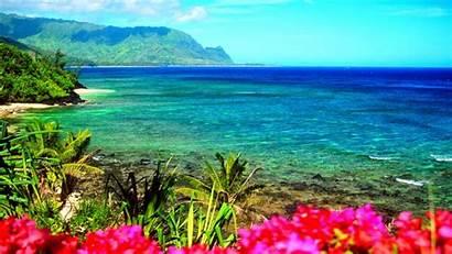 Backgrounds Hawaii Desktop Hawaiian Virtual Wallpapers Bergerak