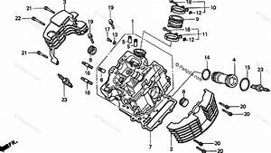 Honda Motorcycle 2001 Oem Parts Diagram For Cylinder Head