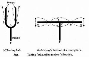 Vibration Of Strings And Air Columns