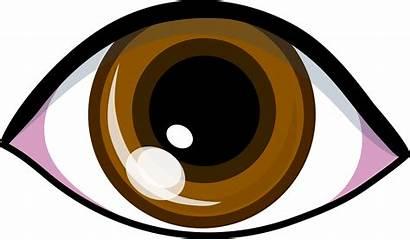 Vision Eye Clipart Brown Clipartpanda Clip Symbol