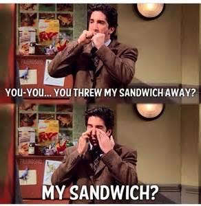 Ross Gellar My Sandwich