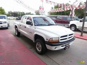 Sport 2000 Gray : 2000 bright white dodge dakota sport crew cab 4x4 31791381 photo 11 car color ~ Gottalentnigeria.com Avis de Voitures