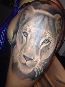 related lioness tattoo lion face