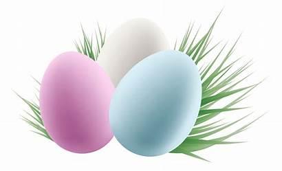 Easter Eggs Transparent Clipart Grass Border Egg