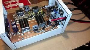 Skywalker 8xirf520 Mosfet Class C Amp For Ebay