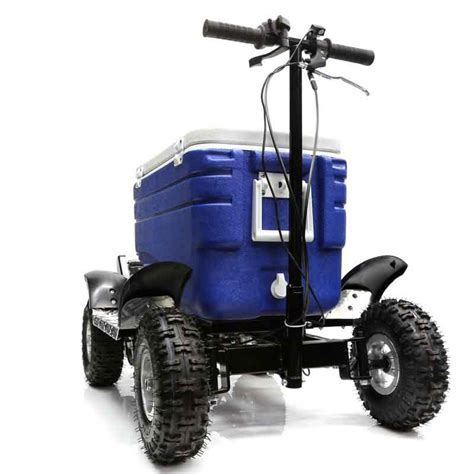 49CC RIDE ON ESKY COOLER SCOOTER   MOTORIZED QUAD 4 STROKE