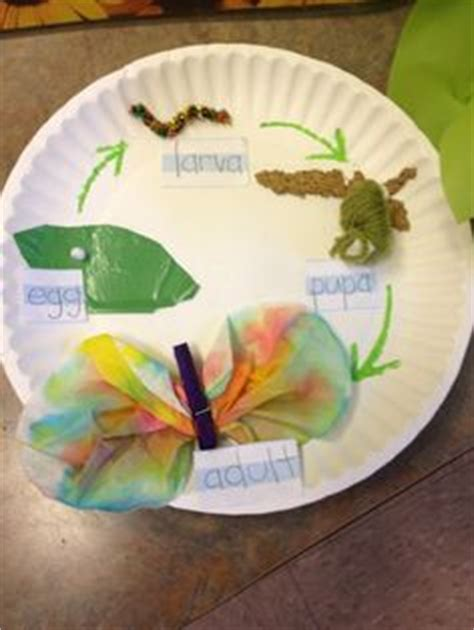 Butterfly Life Cycle Paper Plate Toy Craft Free Fjextange Template by 1000 Images About Caterpillars On Pinterest Caterpillar