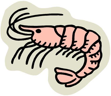 cuisine top chef lenten season and a spicy shrimp recipe