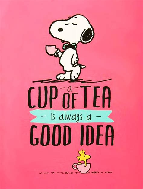Free Computer Desktop Wallpaper Free Snoopy Cup Of Tea Computer Desktop Hd Wallpapers Backgrounds Pictures Images Pics