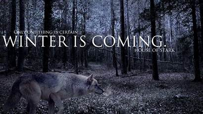 Thrones Coming Winter Wolves Wallpapers North Remembers