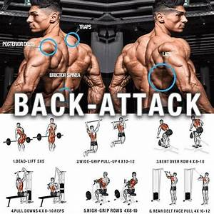 Back Exercises  U2013 Attack Huge Back  U0026 Training Programs