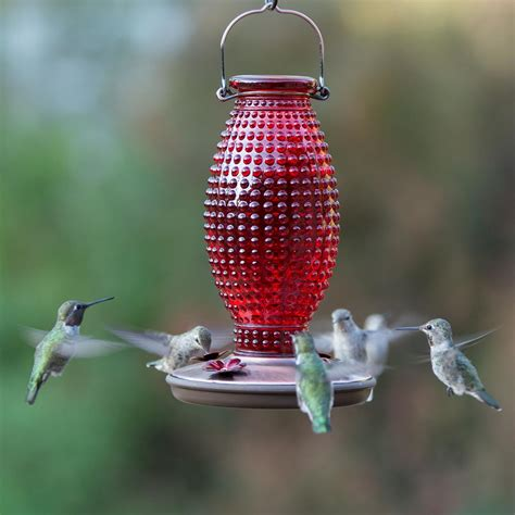 hummingbird feeder amazon com perky pet red hobnail vintage glass hummingbird feeder 8130 2 patio lawn garden