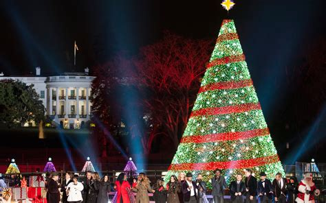 american made christmas trees 5 of the most beautiful trees in america