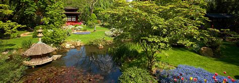 Japanischer Chinesischer Garten Pflanzen by Japanischer Garten Leverkusen Pflanzen F 252 R Nassen Boden
