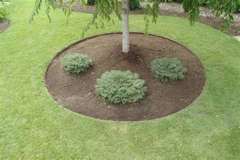 Very Easy Landscape Edging Ideas