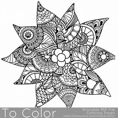 Coloring Christmas Poinsettia Adults Pages Detailed Holiday
