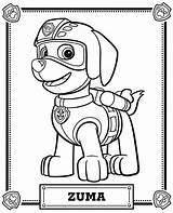 Paw Patrol Zuma Coloring Pages Skye Meet Children Printable Para Colorear Sheet Canina Patrulla Dibujo Patrouille Pat Da Pintar Los sketch template