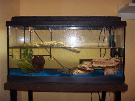 aquarium de tortue d eau des petites tortues difficiles