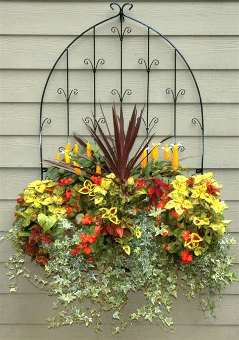 garden wall planter window box and wall planter photo gallery