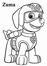 Paw Patrol Coloring Pages Zuma Pdf Printable Skye Characters Chase Craft Marshall sketch template