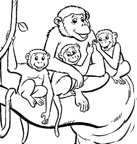 baby monkey coloring pages coloring home
