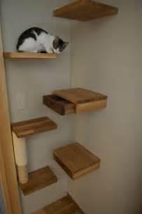 cat shelf secret drawer ideas for hiding things in plain sight