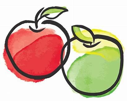 Apple Illustration Fruit Clipart Facts Interesting Apples