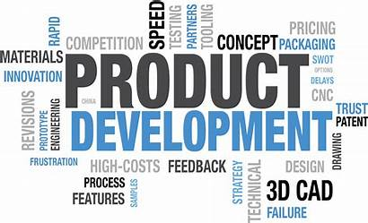 Development Business Reasons Projects Innovation