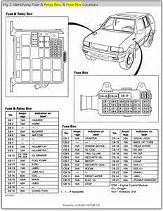 Diagram Of Isuzu Axiom Engine  U2022 Downloaddescargar Com