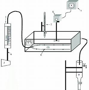 Schematic Diagram Of The Experimental System  1  Water