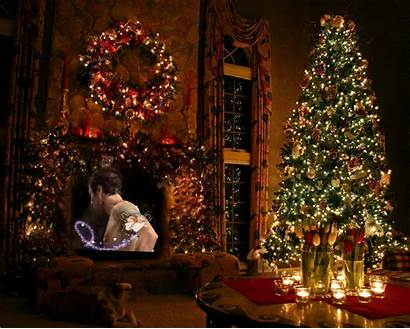 Merry Happy Holidays Xmas Wish Study Intense