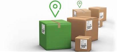 Tracking Track Trace Shipment Logistics Shipping Proship